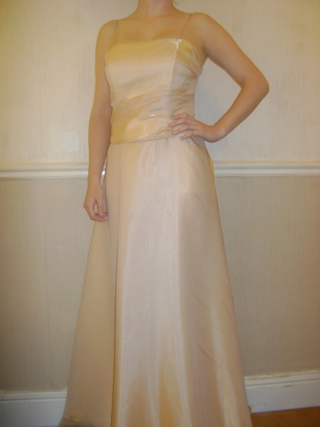 Gold Dress - Size 12 - 77JO